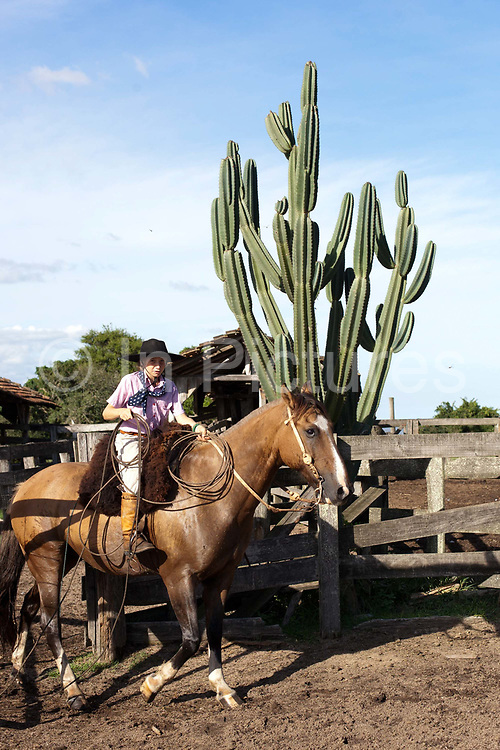 Young boy Gaucho cowboy Brazilian riding a horse with a cactus in the background. Working Gaucho Fazenda in Rio Grande do Sul, Brazil.