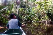 Exploring the Amazon rainforest of Ecuador from a canoo