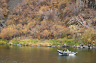 Autumn Steelhead fishing from a float boat in the Grande Ronde River Canyon, Washington, USA