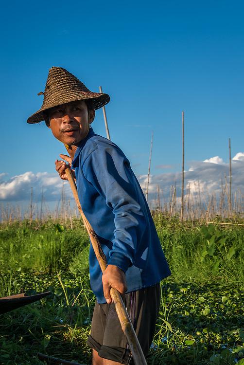 INLE LAKE, MYANMAR - CIRCA DECEMBER 2013: Man working on floating garden in Inle Lake.