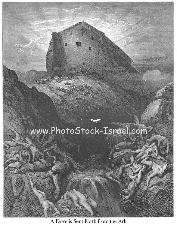 The Dove Sent Forth from the Ark Genesis 8:11 From the book 'Bible Gallery' Illustrated by Gustave Dore with Memoir of Doré and Descriptive Letter-press by Talbot W. Chambers D.D. Published by Cassell & Company Limited in London and simultaneously by Mame in Tours, France in 1866
