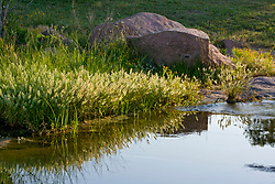 Stock photo of a boulder on the banks of the Llano River in the Texas Hill Country