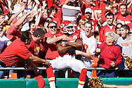KANSAS CITY, MO - NOVEMBER 2:  Dwayne Bowe #82 of the Kansas City Chiefs celebrates with the fans after scoring a touchdown against the Tampa Bay Buccaneers at Arrowhead Stadium on November 2, 2008 in Kansas City, Missouri.  The Bucaneers defeated the Chiefs 30-27 in overtime.  (Photo by Wesley Hitt/Getty Images) *** Local Caption *** Dwayne Bowe Sports photography by Wesley Hitt photography with images from the NFL, NCAA and Arkansas Razorbacks.  Hitt photography in based in Fayetteville, Arkansas where he shoots Commercial Photography, Editorial Photography, Advertising Photography, Stock Photography and People Photography