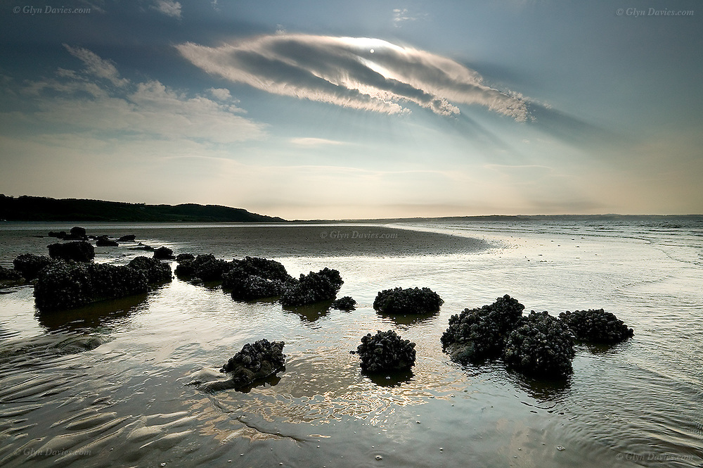Sun behind a cloud over colonies of mussels at low tide, at Llanddona beach, Red Wharf Bay, Anglesey, Wales
