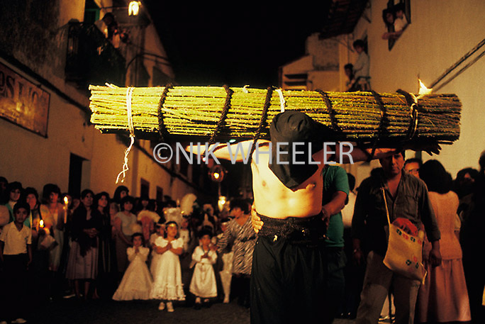 Penitent carries bundle of thorns through streets of Puebla on Good Friday in Mexico