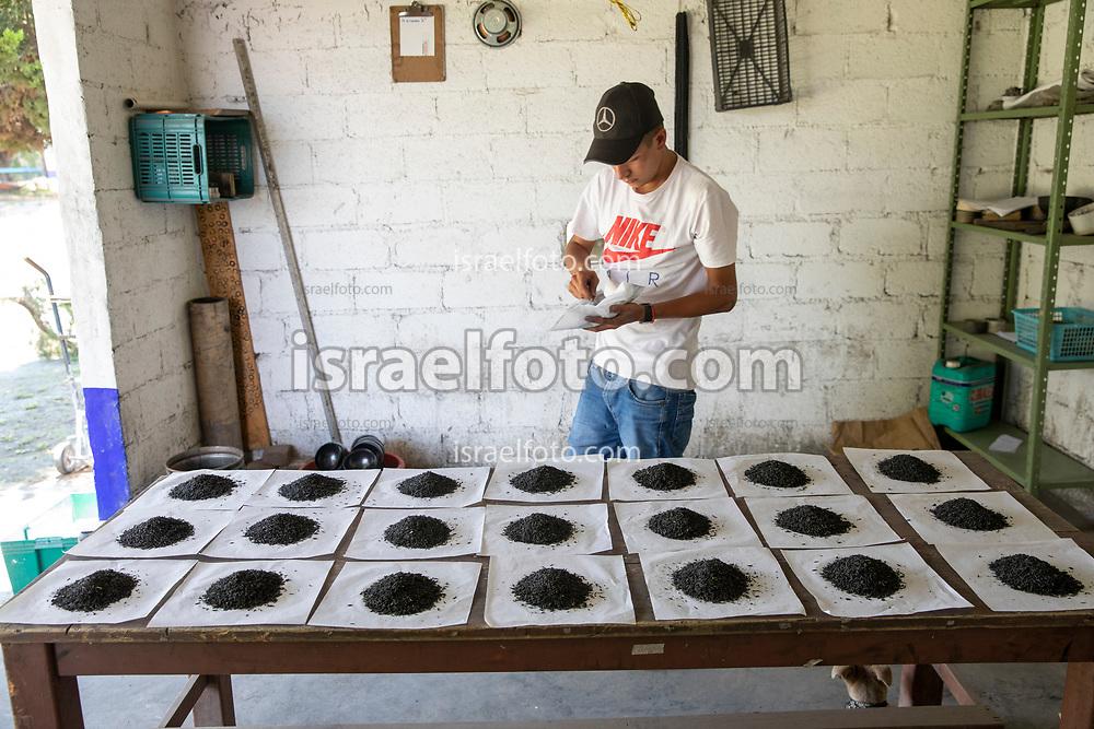 17 mayo 2021, Tultepec, México. Preparación de material pirotécnico en un  taller de La Saucera, ejido de este municipio.