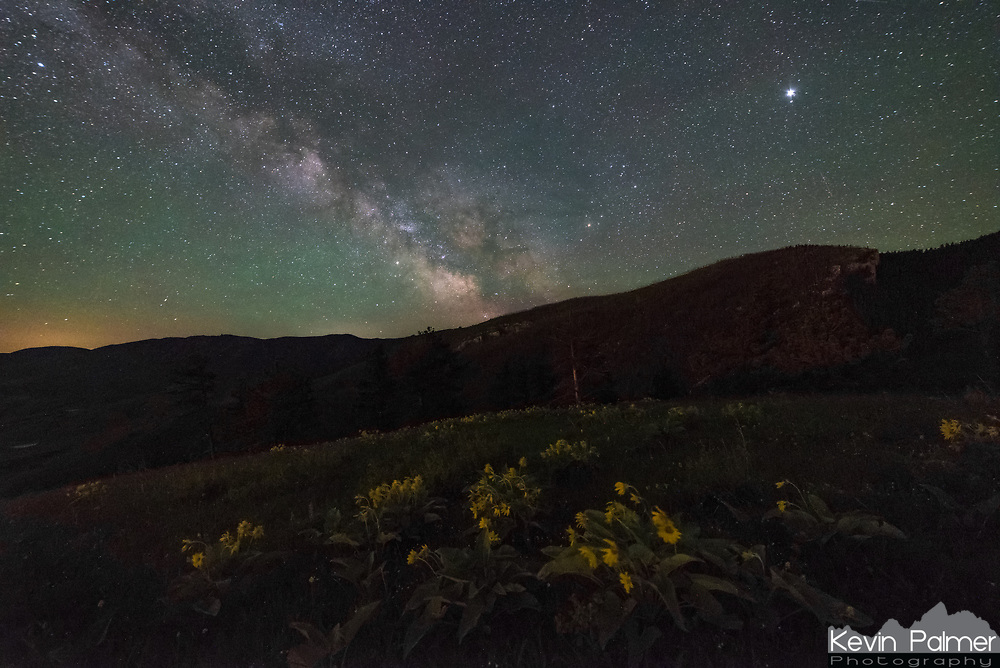 The milky way shines above the Bighorn Mountains as seen from Red Grade Road. The light pollution helped to light up the wildflowers in the foreground. Jupiter is the bright object on the upper right.