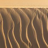 Sahara Sands  (Western Desert, Egypt)