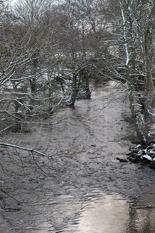 © Licensed to London News Pictures. <br /> 29/01/2015. <br /> <br /> Danby, United Kingdom<br /> <br /> Snow covered trees line the banks of the River Esk near Danby in North Yorkshire. A wintery blast causing extremely cold weather is expected to cause some disruption over the next few days.<br /> <br /> Photo credit : Ian Forsyth/LNP