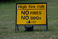 High fire risk sign Bolderwood in the New Forest   photo by Dawn Fletcher-Park