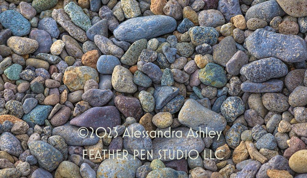 Jewel-toned rocks and debris on lakeshore, Yellowstone Lake, Wyoming.