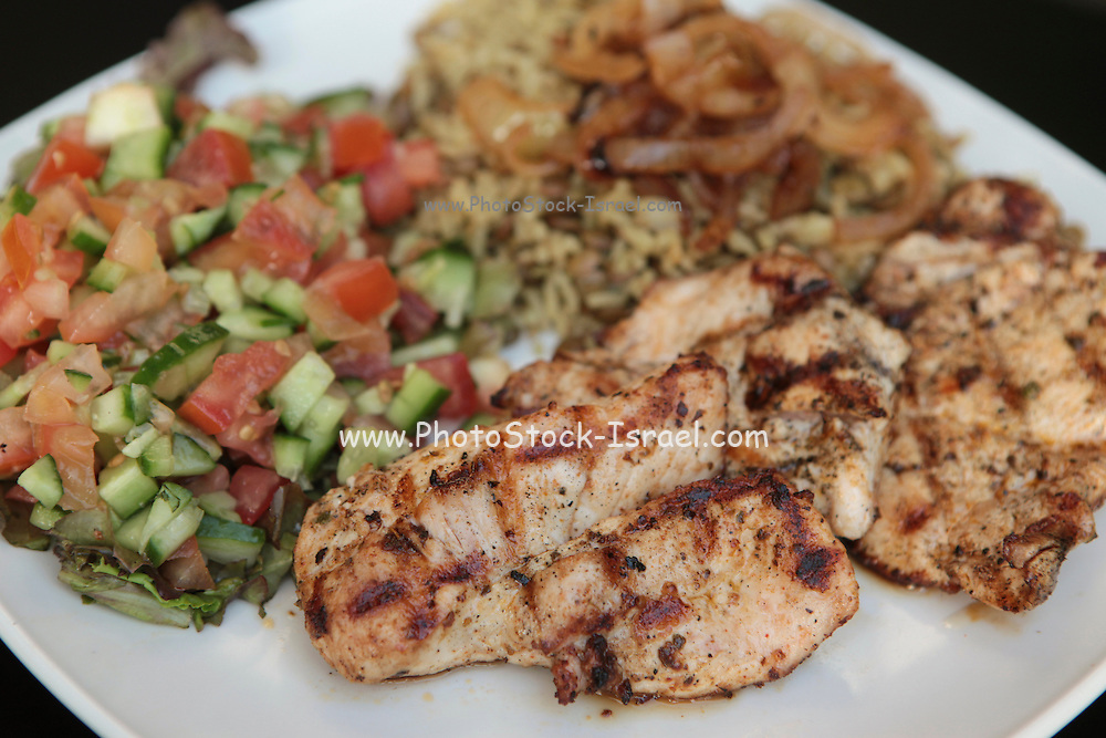 grilled breast of chicken served with salad, rice and fried onions