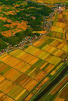 Aerial view of farmland near Narita International Airport, Tokyo, Japan.