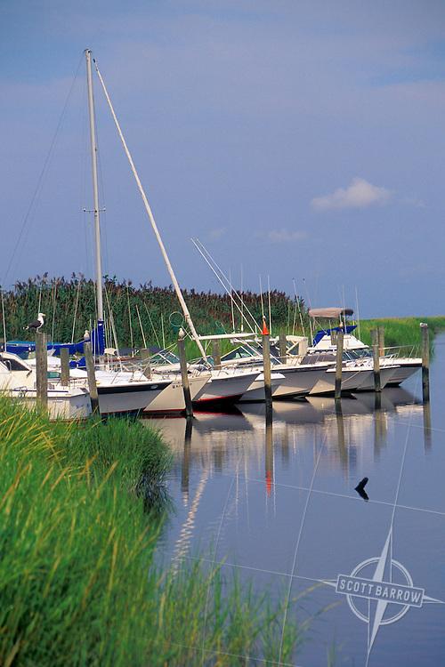 Bidwell Creek Marina