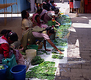 Women selling prickly pear fruit at market, San Miguel de Allende, Mexico