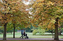 ©Licensed to London News Pictures 30/09/2020  <br /> Greenwich, UK. A show of autumn colours in the trees. A grey autumnal weather day today in Greenwich park, Greenwich, London. Photo credit:Grant Falvey/LNP