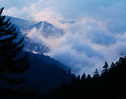 Fog rising from the drainages of Deep Creek viewed from the slopes of Mount Collins, Great Smoky Mountains National Park, North Carolina.