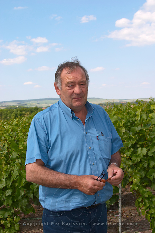 Francois Seconde in his vineyard Champagne Francois Seconde, Sillery Grand Cru, Montagne de Reims, Champagne, Marne, Ardennes, France