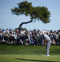 January 26, 2019 - San Diego, CA, USA - Tiger Woods putts on the 2nd hole during the third round of the Farmers Insurance Open at the Torrey Pines Golf Course in San Diego on Saturday, Jan. 26, 2019. (Credit Image: © K.C. Alfred/San Diego Union-Tribune/TNS via ZUMA Wire)