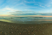 Evening Moonrise over the Ocean, Myrtle Beach, SC