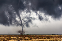 A thin tornado crosses a field in the distance near Dodge City, Kansas, May 24, 2016.