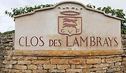 Vineyard. Clos des Lambrays. Burgundy, France