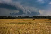 Dark thunderstorm clouds rolls over recently mowed stubble-field of canola (Brassica napus), near Stalidzāni, Vidzeme, Latvia Ⓒ Davis Ulands   davisulands.com