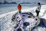 Ian Howat, glaciologist with Ohio State University, and his graduate student Julie Markus, set up a large tent at their field camp at Columbia Glacier, Chugach Mountains, Alaska.