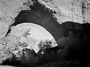 Jacob Hamblin Arch, along Coyote Creek, Coyote Gulch, Grand Staircase-Escalante National Monument, Kane County, Utah