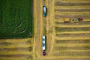 Harvest time near Denmark, Wisconsin