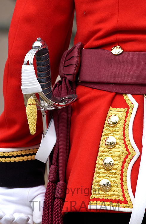 Guardsman at Buckingam Palace, London, United Kingdom.