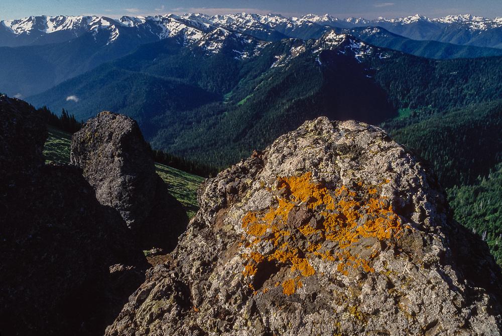 View south from Klahhane Ridge toward the interior of Olympic National Park, Washington, USA