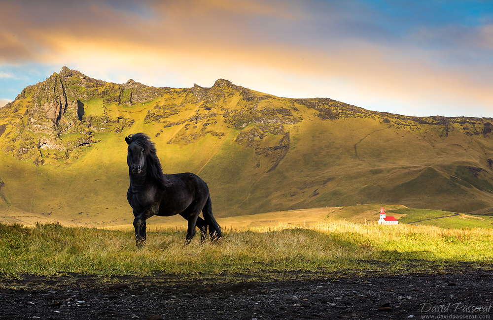 The black horse and the chapel.