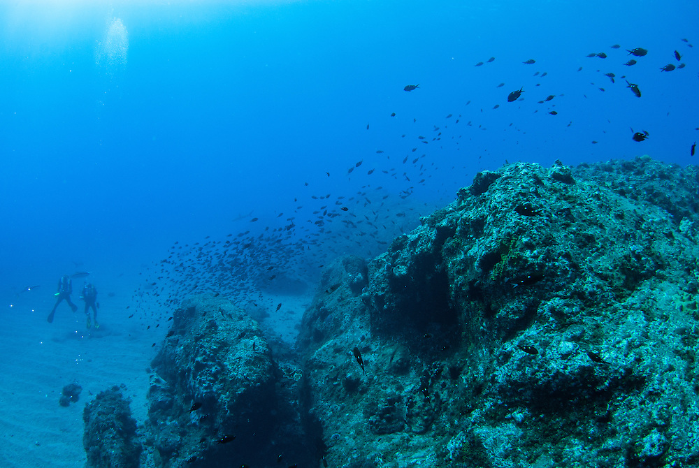 Kermadecs Marine Reserve, Rebreathers and clear water.