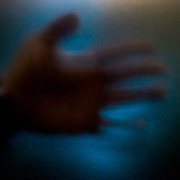 The photographers hand lit only by bioluminescence, no artificial light was used.
