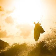 Strange Rumblings, Globe, Surfing, Brazil, Fernando de Noronha