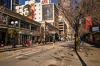 """Pike Street is so empty that the pigeons have literally taken over the area. (Perhaps it should be temporarily renamed as """"Pigeon Street"""")? (March 21, 2020)."""
