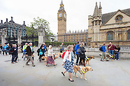 Guide Dogs lobby parliament