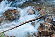 Water streams over a log on the Pacific Crest Trail between Rainy Pass (Highway 20) and Cutthroat Pass, Okanagon National Forest, Washington, USA.