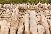 Parallel dry stone walls. Dorset, UK.