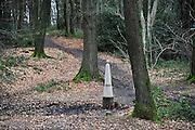 Nederland, Vaals, 8-2-2014In het bos op de Vaalserberg staan oude grenspalen die de grens tussen Belgie en Nederland markeren.Deze werd ingesteld in 1843 nadat belgie onafhankelijk was geworden. Het bos is een geliefd wandelgebied.Foto: Flip Franssen/Hollandse Hoogte
