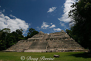 Caana or Sky Palace at Caracol, Mayan ruins in Cayo District, Belize, Central America, Caracol was one of the three largest and most important Mayan city states currently known