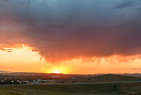 Vibrant sunset colors fill the sky as rain falls from a cloud but does not touch the ground. This is known as virga.