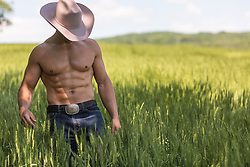 muscular shirtless cowboy in a field of wheat