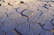 Afternoon light on columnar basalt detail at Devil's Postpile, Devil's Postpile National Monument, California