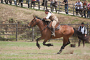 Riarto dei Butteri - a tournament of horsemanship skills for 'butteri', the traditional cowboys of the Maremma area  of northern Lazio and southern Tuscany, Italy.