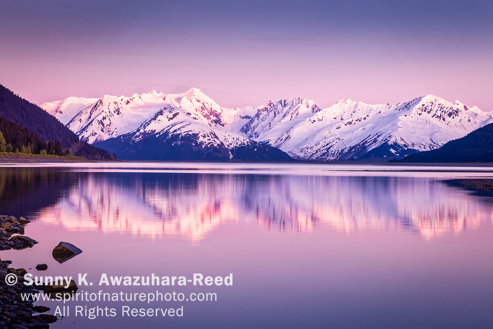 Snow capped Kenai Mountains glow at sunset. The mountains and pastel sky reflect on Turnagain Arm of Cook Inlet, Kenai Peninsula, Southcentral Alaska, Spring.
