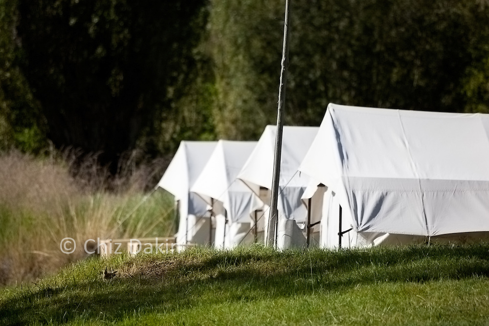 Tents of the amazing green oasis that is the fixed camp at Tirith in the Nubra Valley, Ladakh