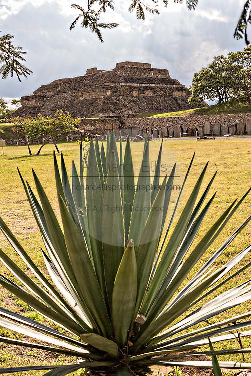 The building of the Danzantes of Monte Albán pre-Columbian archaeological site in the Santa Cruz Xoxocotlán, Oaxaca, Mexico.
