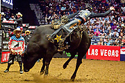 Cody Teel riding bull Rising Sun during the 25th Professional Bull Riders  Unleash the Beast Music City Knockout in Nashville, Tenn., Friday, Aug 17, 2018. (Michelle Donovan/Image of Sport)
